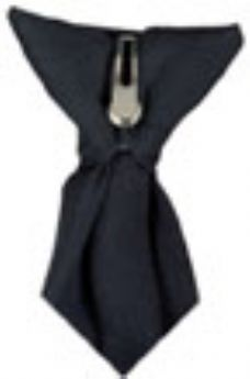 Clip-on Safety Tie